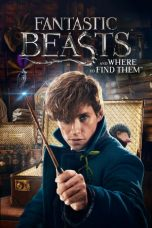 Nonton Movie Fantastic Beasts and Where to Find Them (2016) Subtitle Indonesia