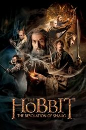 Nonton Movie The Hobbit: The Desolation of Smaug (2013) Subtitle Indonesia