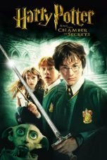 Harry Potter and the Chamber of Secrets (2002) Poster