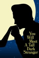 Nonton Movie You Will Meet a Tall Dark Stranger (2010) Subtitle Indonesia