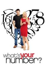 Nonton Movie What's Your Number? (2011) Subtitle Indonesia