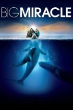 Nonton Movie Big Miracle (2012) Subtitle Indonesia