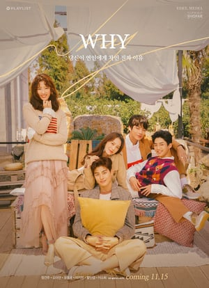 Nonton W.H.Y: What Happened to Your Relationship (2018) Sub Indo Terbaru